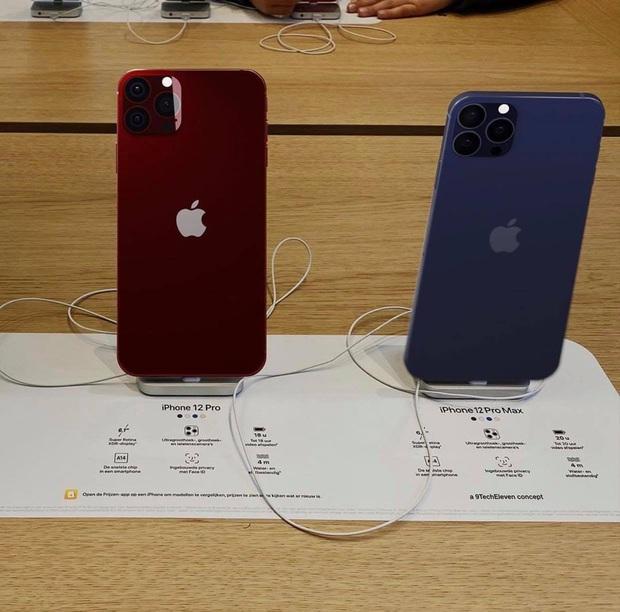 Rò rỉ thông tin 2 màu mới của iPhone 12 trước ngày ra mắt - Ảnh 3.