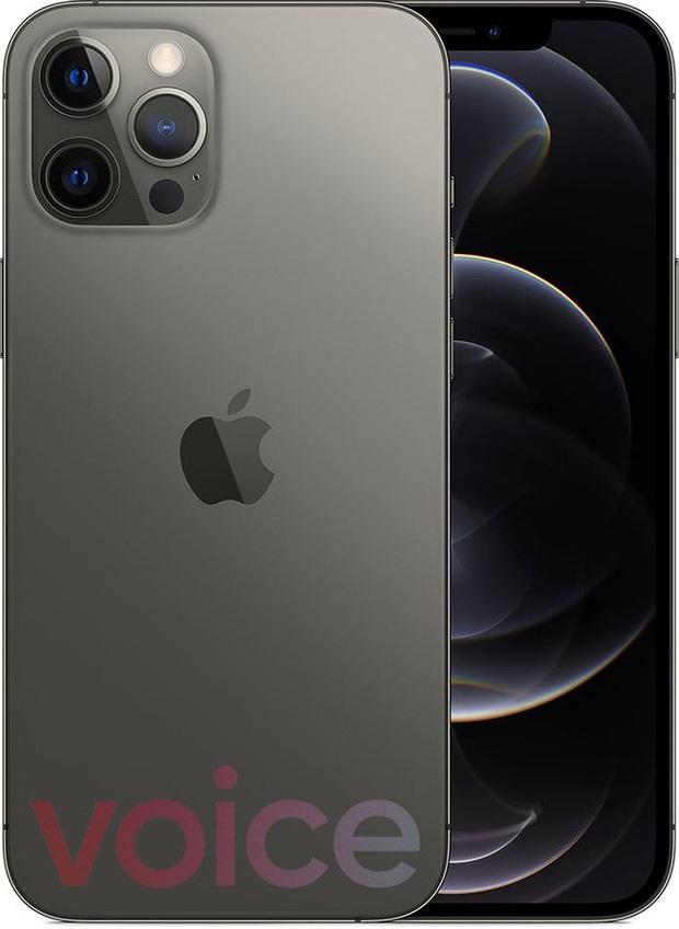 iPhone 12 bất ngờ rò rỉ đầy đủ màu sắc ngay trước giờ G - Ảnh 3.