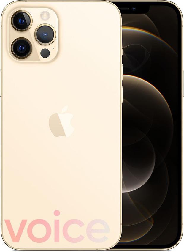 iPhone 12 bất ngờ rò rỉ đầy đủ màu sắc ngay trước giờ G - Ảnh 5.