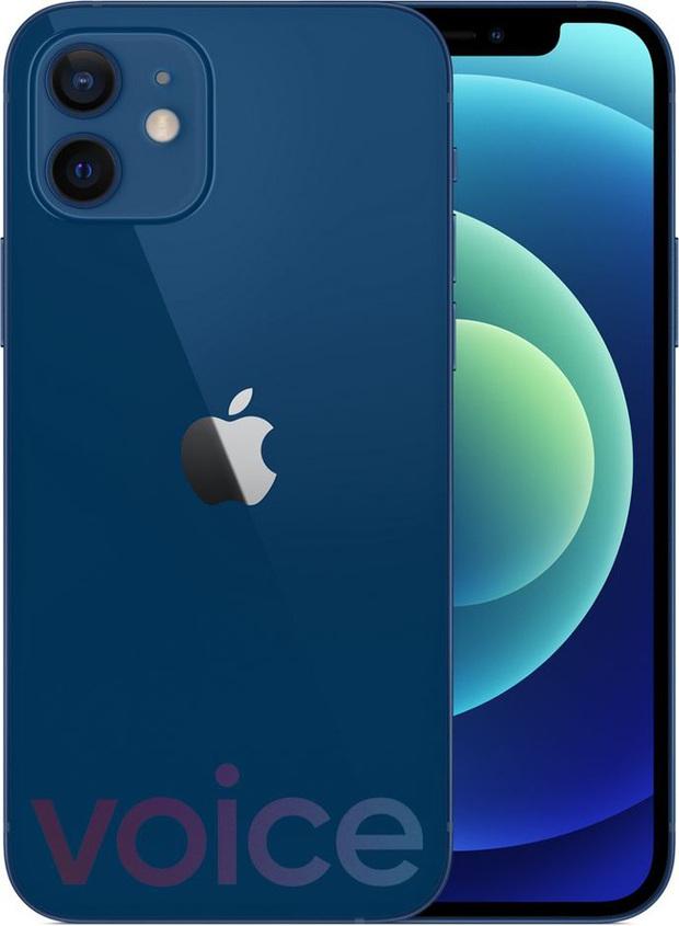 iPhone 12 bất ngờ rò rỉ đầy đủ màu sắc ngay trước giờ G - Ảnh 6.