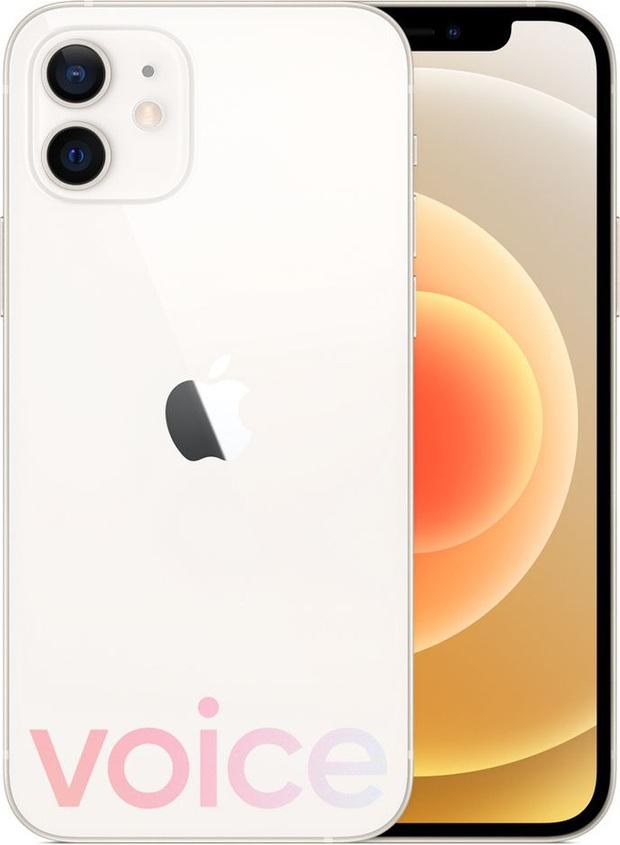 iPhone 12 bất ngờ rò rỉ đầy đủ màu sắc ngay trước giờ G - Ảnh 8.