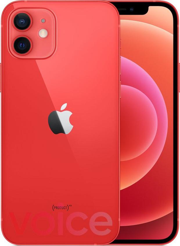 iPhone 12 bất ngờ rò rỉ đầy đủ màu sắc ngay trước giờ G - Ảnh 10.