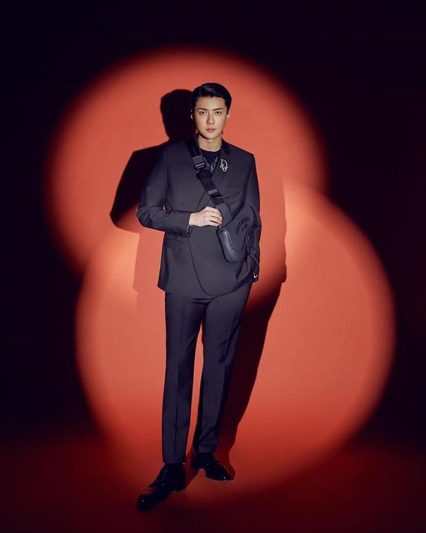 Dàn idol Kpop làm đại sứ của các ông lớn sang chảnh: SM - YG gần như thầu cả, BLACKPINK biểu tượng đẳng cấp là có lý do - Ảnh 11.