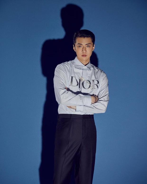 Dàn idol Kpop làm đại sứ của các ông lớn sang chảnh: SM - YG gần như thầu cả, BLACKPINK biểu tượng đẳng cấp là có lý do - Ảnh 12.