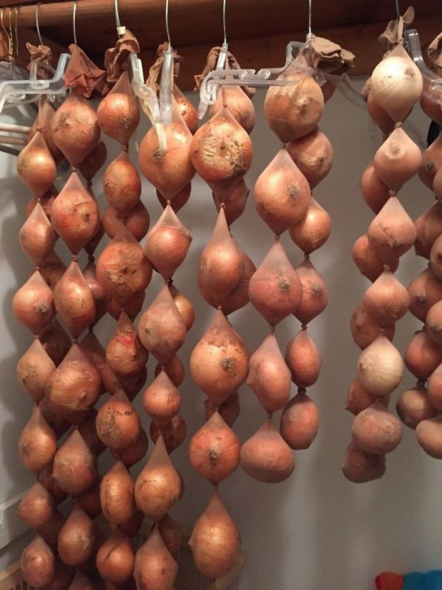 17 mẹo bảo quản giữ thực phẩm tươi ngon lâu hơn: Điều số 7 nhiều người hay nhầm lẫn - Ảnh 1.