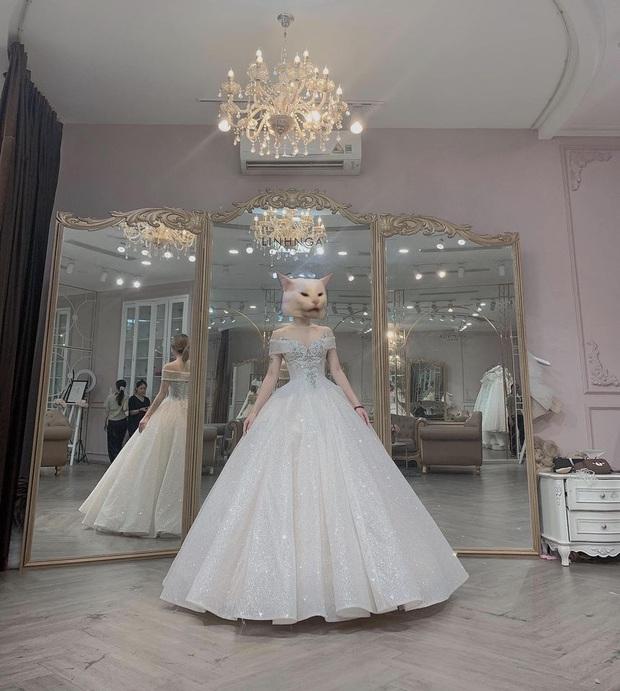 Boy 1 Champ Hà Tiều Phu bất ngờ đăng ảnh streamer Hoàng Thu Hường thử váy cưới, dân tình rôm rả chúc mừng - Ảnh 2.