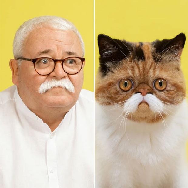 Bộ ảnh chứng minh chủ và thú cưng chung sống càng lâu càng giống nhau - Ảnh 3.