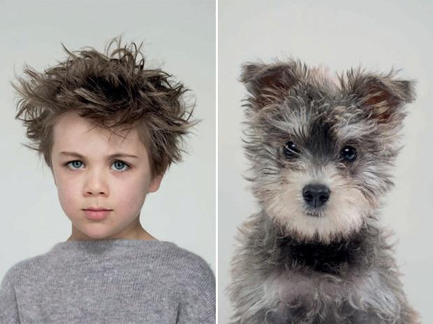 Bộ ảnh chứng minh chủ và thú cưng chung sống càng lâu càng giống nhau - Ảnh 14.