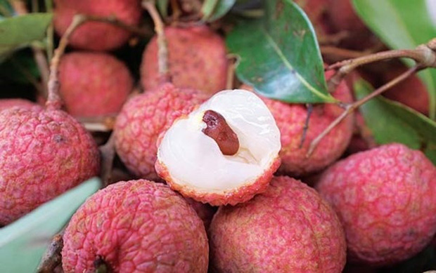Việt Nam có loạt trái cây đặc sản ngon nức tiếng chỉ được trồng ở vài địa phương, một số loại còn xuất khẩu sang cả nước ngoài - Ảnh 2.
