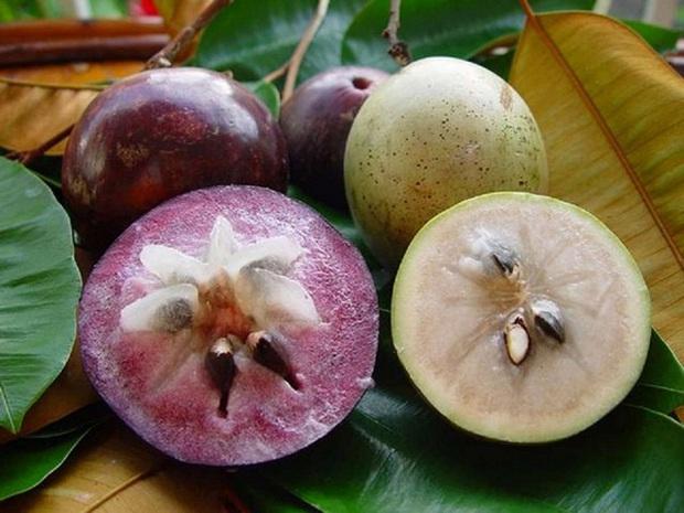 Việt Nam có loạt trái cây đặc sản ngon nức tiếng chỉ được trồng ở vài địa phương, một số loại còn xuất khẩu sang cả nước ngoài - Ảnh 9.