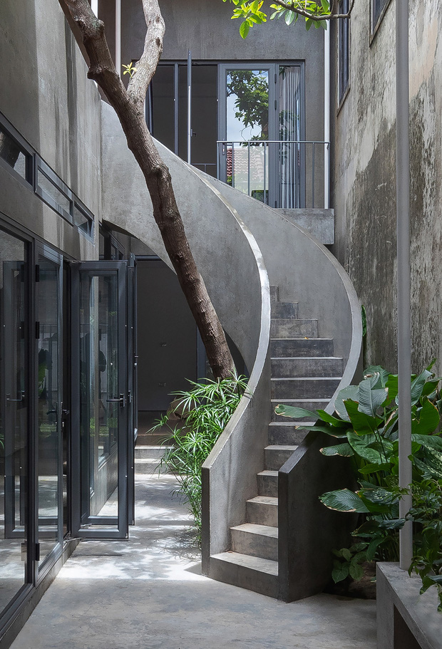 Bước vào ngôi nhà trong ngõ rộng 3m được phủ xanh bằng cây cối, ai cũng thích thú với chiếc cầu thang cực hợp sống ảo - Ảnh 7.