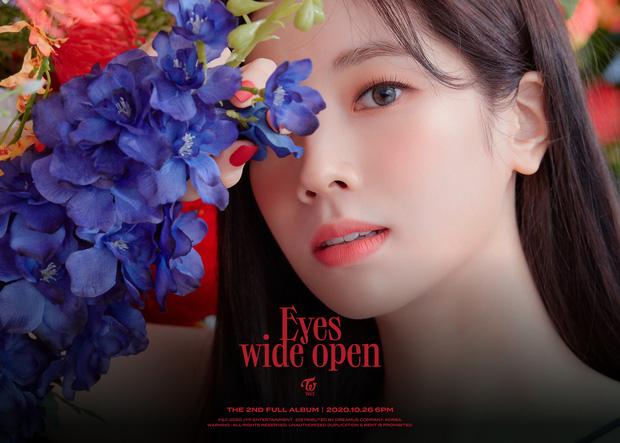Từ fan Việt đến netizen Hàn đồng loạt chỉ trích JYP sau thông báo Jeongyeon không thể quảng bá cùng TWICE  - Ảnh 2.