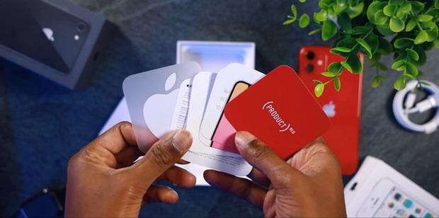 Cận cảnh iPhone 11 date mới với hộp siêu mỏng, bỏ củ sạc và tai nghe - Ảnh 5.