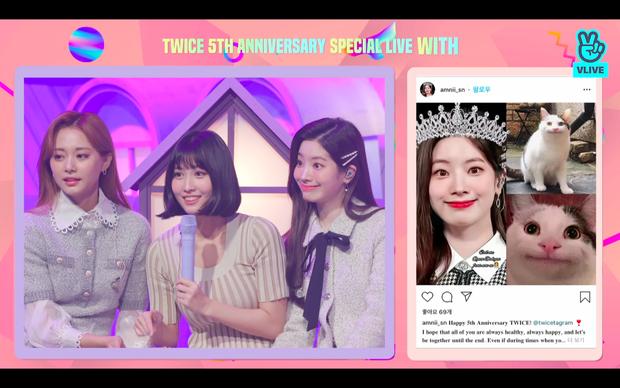 Tròn 5 năm debut, TWICE mở buổi live đặc biệt: Jeongyeon vắng mặt, các thành viên không ngại spoil ca khúc mới khiến fan sướng rơn - Ảnh 26.