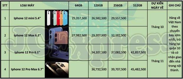 Mất thêm 10 triệu đồng để sở hữu sớm iPhone 12 Pro Max tại Việt Nam - Ảnh 1.