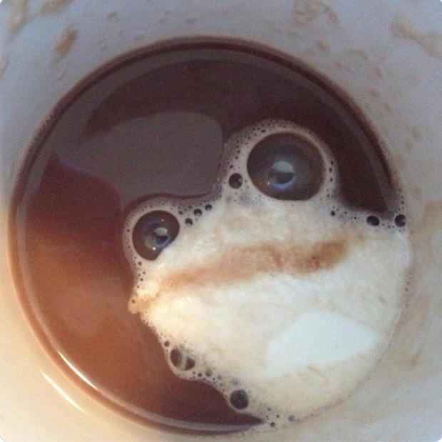"""Những lần dân mạng chứng kiến """"vật thể lạ"""" xuất hiện trong ly cà phê của mình, trí tưởng tượng phong phú lắm mới nhận ra được - Ảnh 7."""
