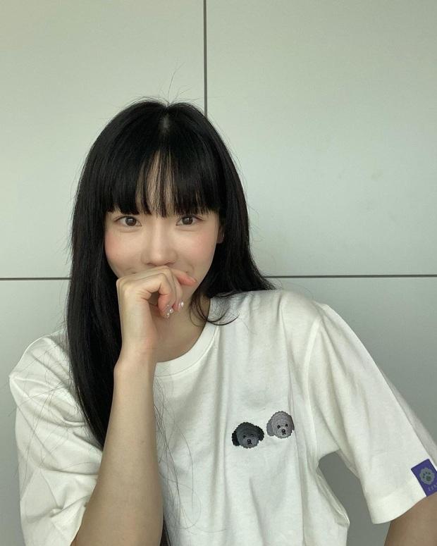 Taeyeon và Hà Tăng lăng xê xu hướng tóc mái che mặt bánh bao, trán sân bay cực kỳ lợi hại - Ảnh 1.