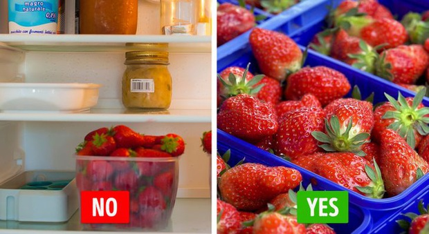Những loại thực phẩm tốt nhất bạn không nên cho vào tủ lạnh nếu muốn giữ chúng lâu hơn, hoá ra đó giờ ai cũng bảo quản sai - Ảnh 7.