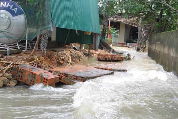 Toàn cảnh thiệt hại của trận lũ lịch sử gây ra tại Hà Tĩnh khiến 147 nghìn người bị ngập lụt - Ảnh 6.