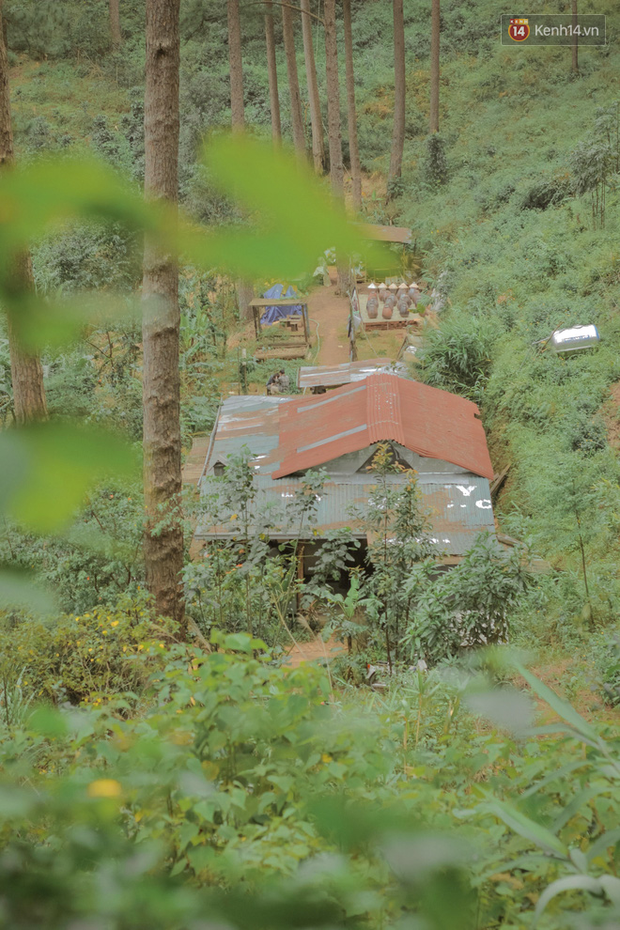 """Da Lat has 4 extremely rare """"chill spread""""-style cafes: Isolated in the middle of the pine forest, every corner of the virtual life is beautiful - Photo 5."""