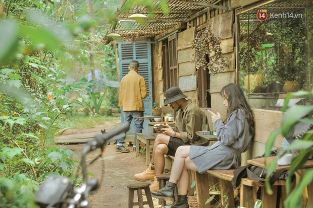 """Da Lat has 4 extremely rare """"chill spread"""" style cafes: Isolated in the middle of the pine forest, every corner of the virtual life is beautiful - Photo 1."""
