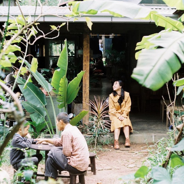 """Dalat has 4 cafes in the style of """"chill spread"""" that are extremely rare to know: Located in the middle of a pine forest, every corner of the street is beautiful - Photo 8."""