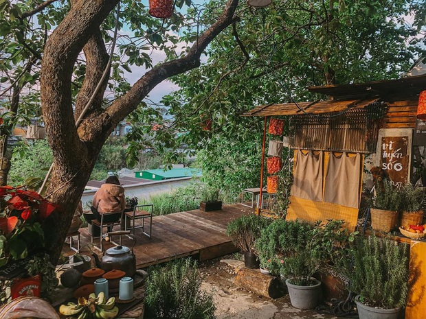 """Dalat has 4 """"chill spread"""" cafes that are very rare to know: Located in the middle of a pine forest, every corner of the street is beautiful - Photo 10."""