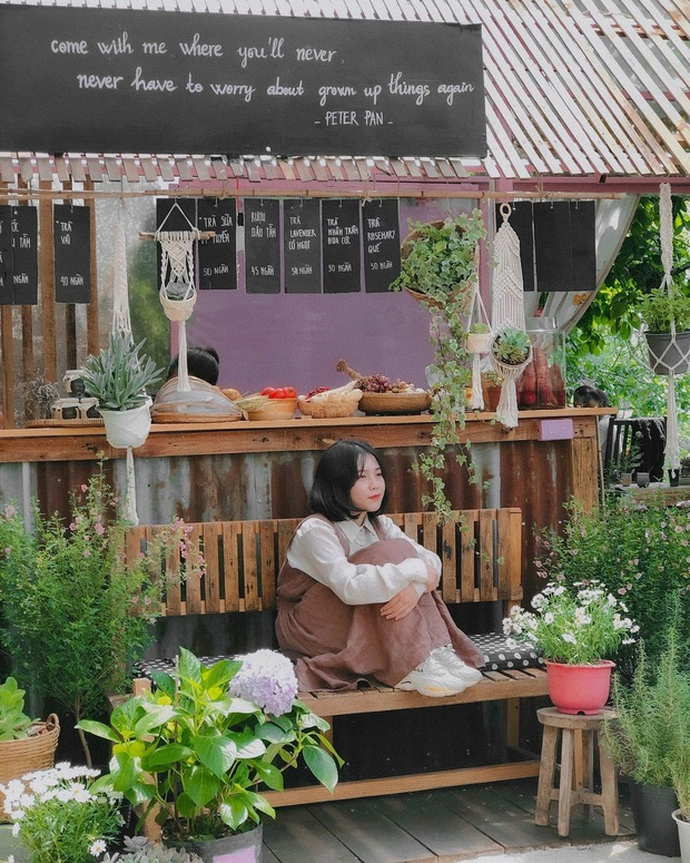 """Dalat has 4 """"chill spread"""" cafes that are very rare to know: Located in the middle of a pine forest, every corner of the street is beautiful - Photo 14."""