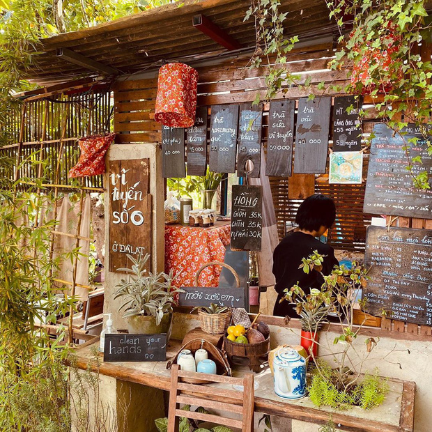 """Dalat has 4 """"chill spread"""" cafes that are very rare to know: Located in the middle of a pine forest, every corner of the street is beautiful - Photo 12."""