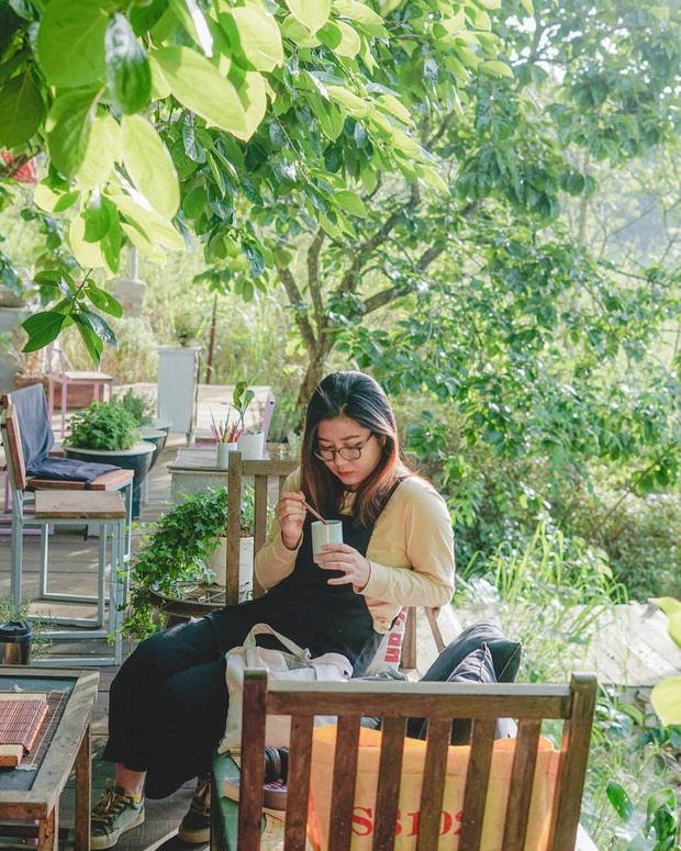 """Dalat has 4 cafes in the style of """"chill spread"""" that are extremely rare to know: Located in the middle of a pine forest, every corner of the street is beautiful - Photo 16."""