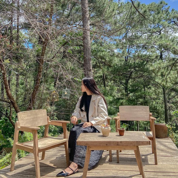 """Dalat has 4 cafes in the style of """"chill spread"""" that are extremely rare to know: Located in the middle of a pine forest, every corner of the street is beautiful - Photo 24."""