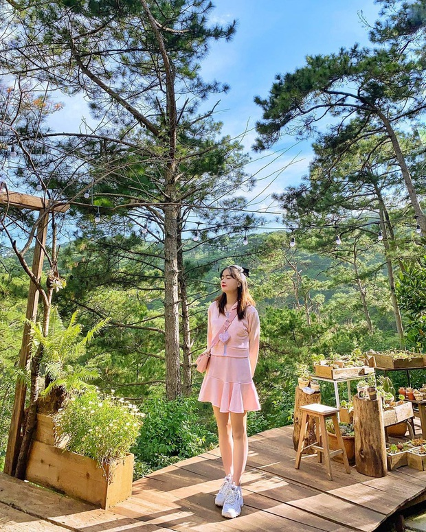 """Dalat has 4 """"chill spread"""" cafes that are very rare to know: Located in the middle of a pine forest, every corner of the street is beautiful - Photo 20."""