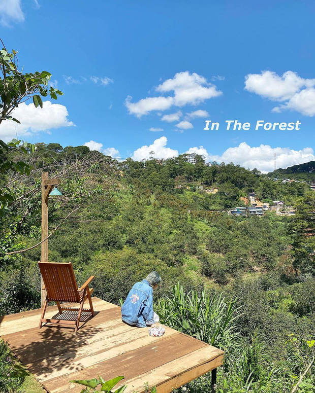"""Dalat has 4 cafes in the style of """"chill spread"""" that are very rare to know: Located in the middle of a pine forest, every corner is beautiful - Photo 30."""