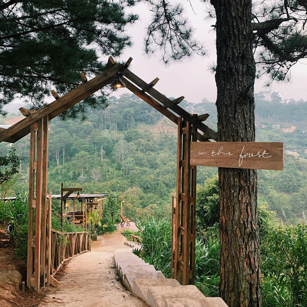 """Dalat has 4 cafes in the style of """"chill spread"""" that are very rare to know: Located in the middle of a pine forest, every corner of the street is beautiful - Photo 28."""