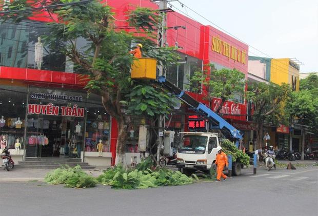 Xót thương người đàn ông nghèo giúp dân đốn cây chống bão số 8, té ngã nhập viện - Ảnh 1.