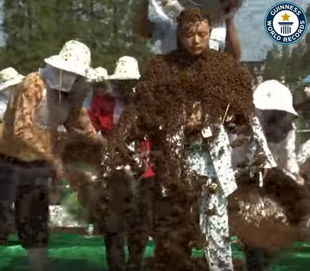 Kỷ lục Guinness đăng video siêu dị về người ong đạt hơn 5 triệu lượt xem sau vài giờ, dân mạng xem xong cũng gai hết cả người - Ảnh 2.