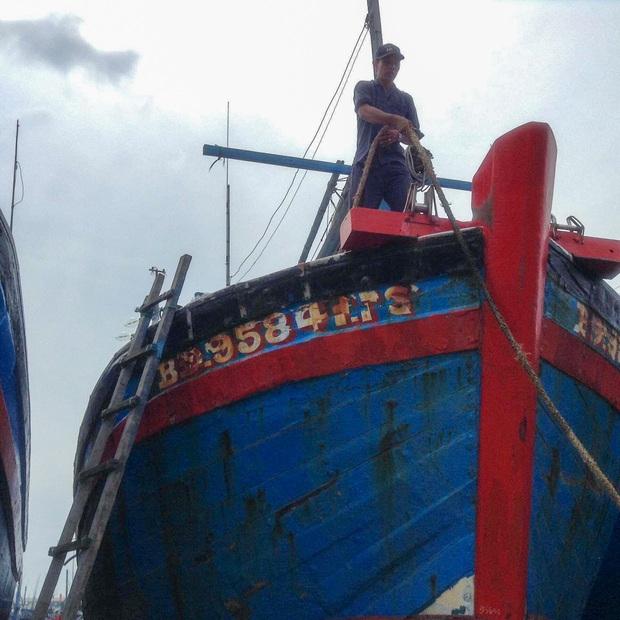 Ngư dân Bình Định tấp nập gia cố tàu thuyền tránh bão số 9 đang vào bờ - Ảnh 5.