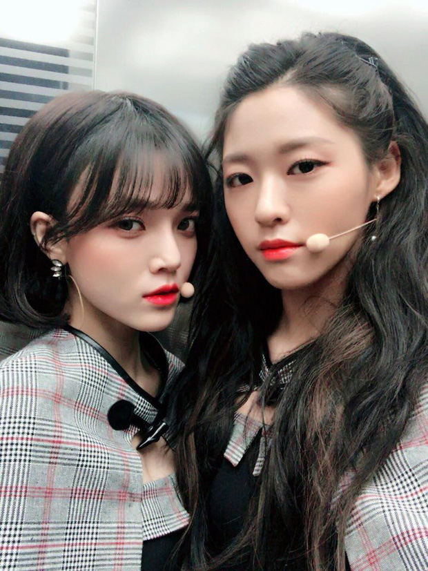Tranh cãi việc Seolhyun (AOA) - Jennie (BLACKPINK) bị gọi hồn khi bạn thân Jimin và Irene (Red Velvet) dính phốt chấn động - Ảnh 11.