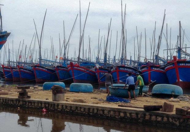 Ngư dân Bình Định tấp nập gia cố tàu thuyền tránh bão số 9 đang vào bờ - Ảnh 3.