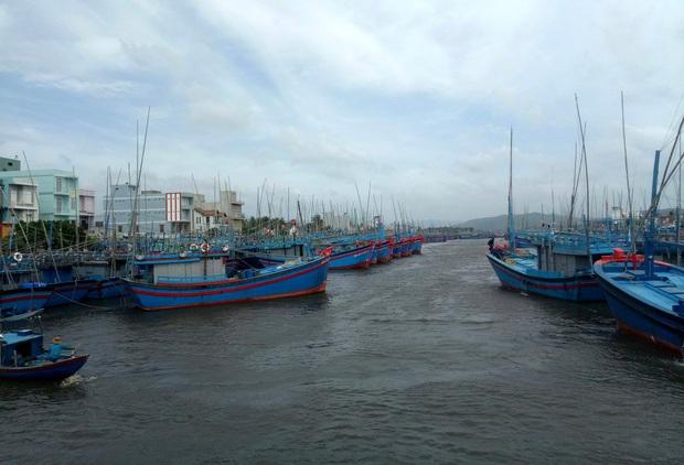 Bình Định: Người dân gần tâm bão số 9 hối hả dùng bao nước chằng chống nhà tốc mái - Ảnh 1.