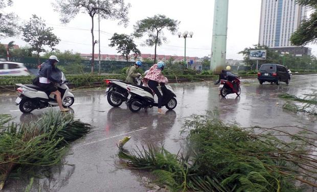 Nhìn lại những cơn bão với sức tàn phá kinh hoàng, được so sánh mạnh tương đương bão số 9 năm nay tại Việt Nam - Ảnh 19.