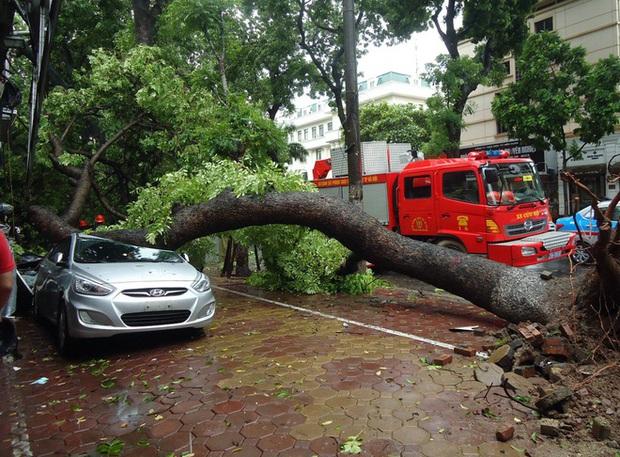 Nhìn lại những cơn bão với sức tàn phá kinh hoàng, được so sánh mạnh tương đương bão số 9 năm nay tại Việt Nam - Ảnh 21.