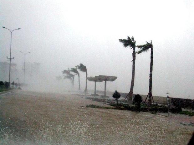 Nhìn lại những cơn bão với sức tàn phá kinh hoàng, được so sánh mạnh tương đương bão số 9 năm nay tại Việt Nam - Ảnh 5.