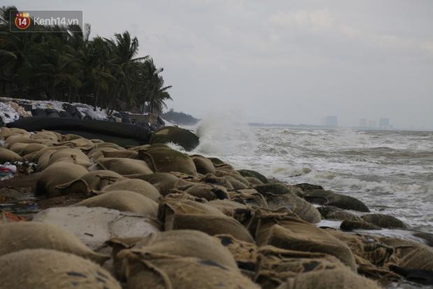 Ảnh: Trước giờ bão số 9 đổ bộ, người dân Hội An tất bật chằng chịt nhà cửa, sơ tán đến nơi an toàn - Ảnh 10.