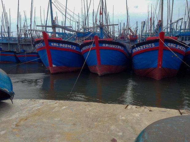 Bình Định: 1 tàu cá bị chìm trên đường tránh bão, 12 thuyền viên mất tích - Ảnh 1.