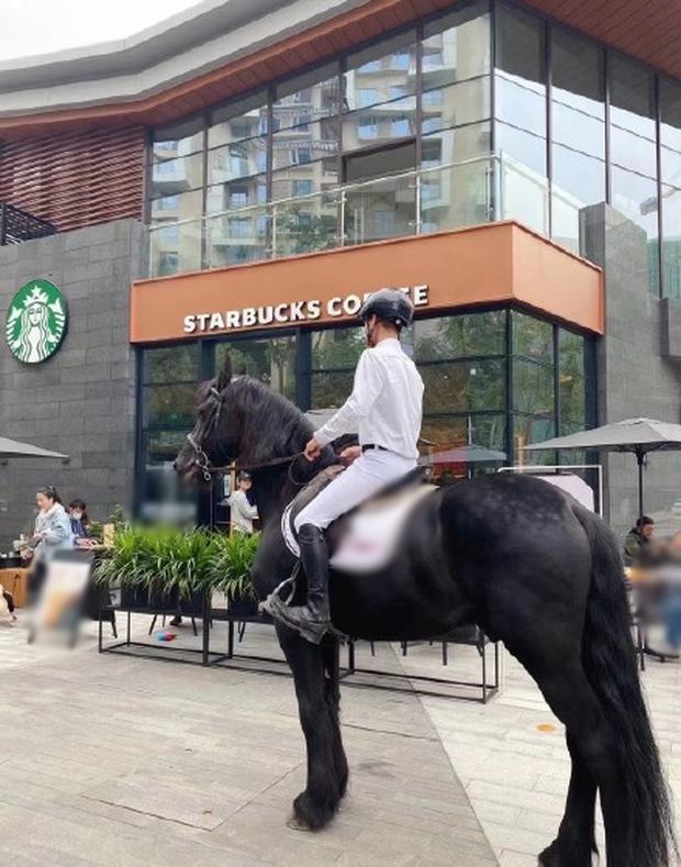 Starbucks tặng 1 ly nước free cho khách dắt theo thú cưng, có người mang cả cua biển tới để nhận quà - Ảnh 5.
