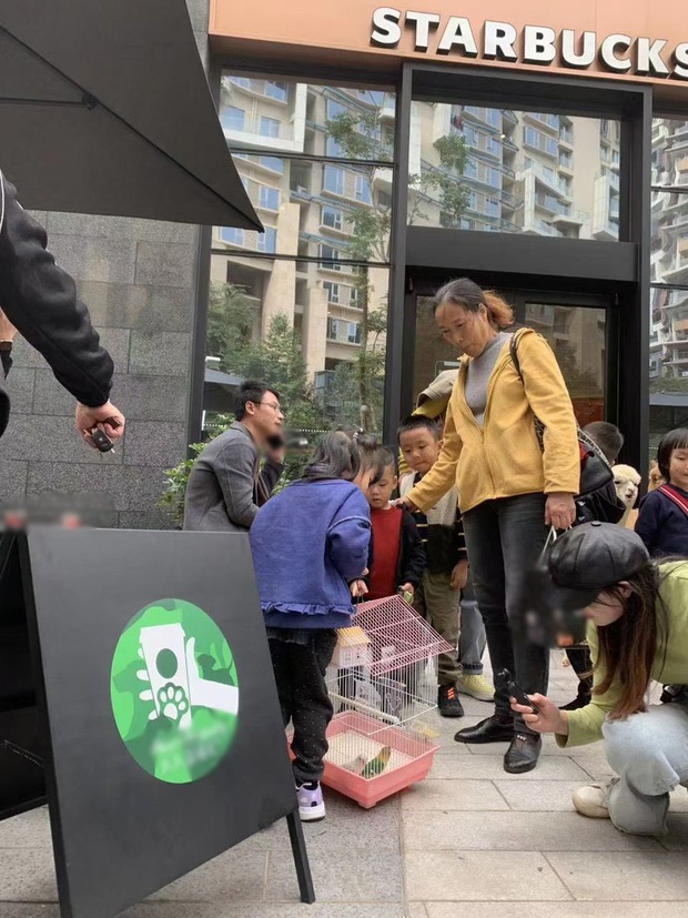 Starbucks tặng 1 ly nước free cho khách dắt theo thú cưng, có người mang cả cua biển tới để nhận quà - Ảnh 3.