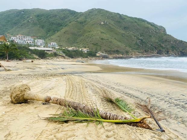 Bãi biển Quy Nhơn 1 ngày sau bão số 9: Khung cảnh tan hoang, các công trình du lịch bị phá huỷ gần như toàn bộ - Ảnh 6.