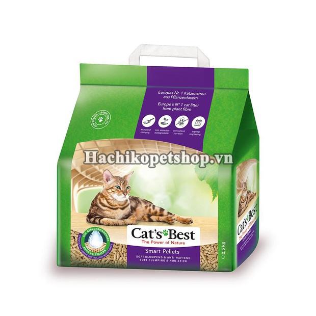 Cẩm nang sắm đồ basic cho các sen lần đầu nuôi mèo, đảm bảo boss ưng hết cỡ - Ảnh 22.