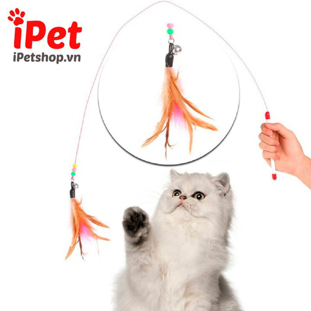 Cẩm nang sắm đồ basic cho các sen lần đầu nuôi mèo, đảm bảo boss ưng hết cỡ - Ảnh 32.
